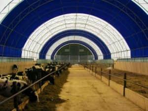 Каркасно-тентовое зернохранилище в д. Пазял - фото korovnik2-300x225